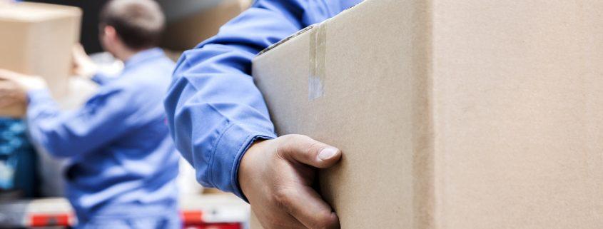 removals staff transporting box